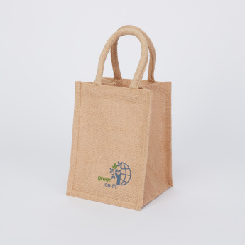 Go Green Lunch Bag - Small