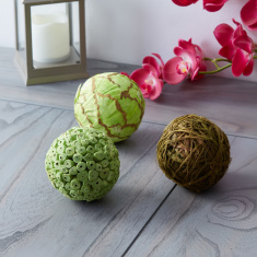 Fuzio 3-Piece Dry Flowers Ball Set