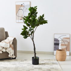 Teodora Artificial Fig Tree - 150 cms